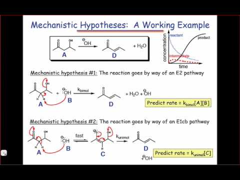 Mechanistic Hypotheses