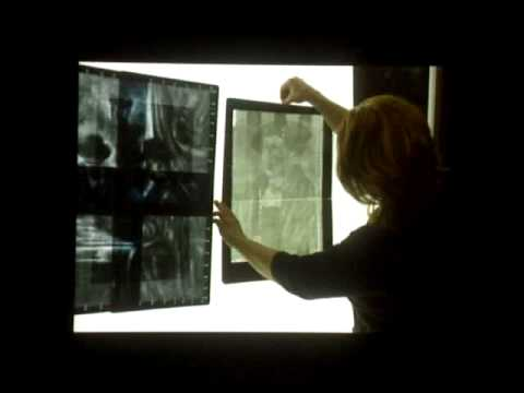 Understanding the Evidence: The Technical Examination of Early German Paintings