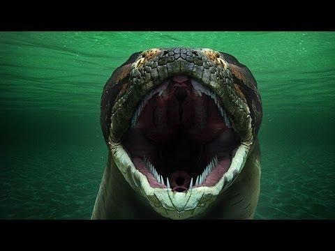 Titanoboa: Monster Snake - (Full Episode)