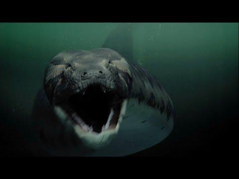 Titanoboa: Monster Snake - Teaser