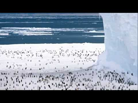 98 The Antarctic Peninsula