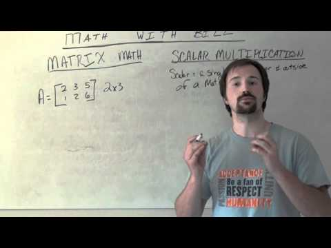 Matrix Scalar Multiplication