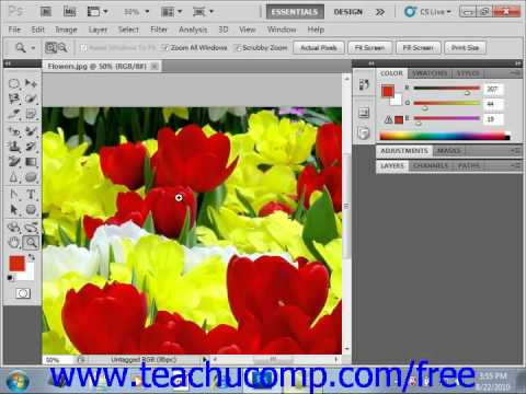Photoshop CS5 Tutorial Bitmap Images Adobe Training Lesson 3.1