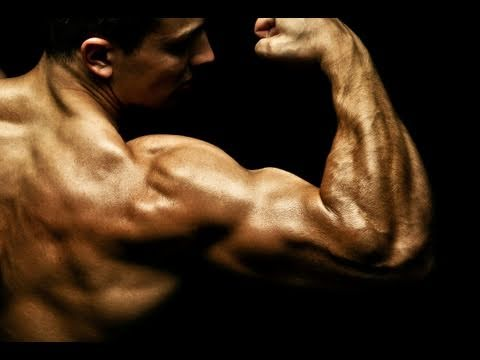 The Best Arm Workout for Home . ( Biceps , Triceps )