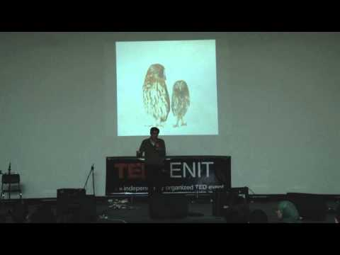 Tunisian young professionals: Mohamed Malouche at TEDxENIT