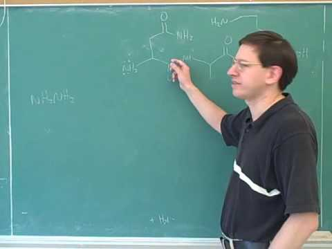 Organic chemistry: Amino acids and peptides (23)