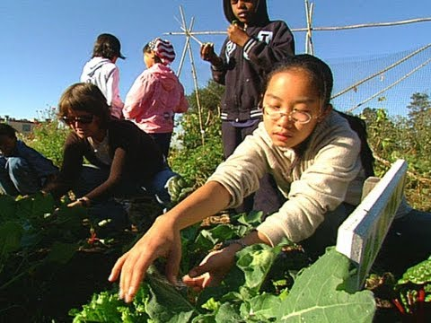The Edible Schoolyard Yields Seed-to-Table Learning