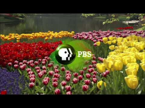 THE BOTANY OF DESIRE   PBS