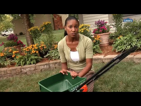 How to Choose the Right Fertilizer for Your Lawn - Home 101