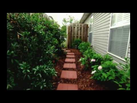 Landscaping and Gardening Ideas for Your Backyard Space