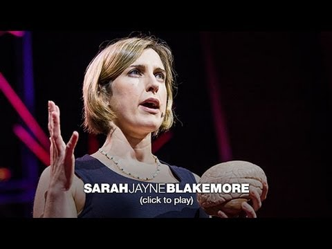 Sarah-Jayne Blakemore: The mysterious workings of the adolescent brain