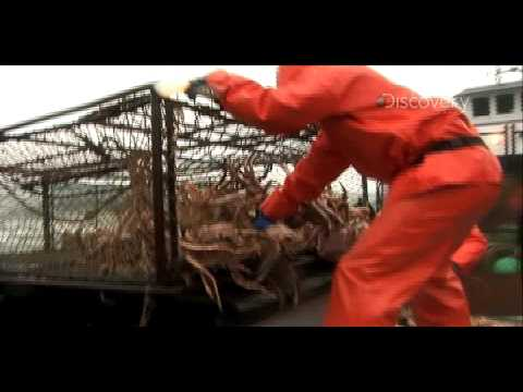 Deadliest Catch: Preventative Maintenance