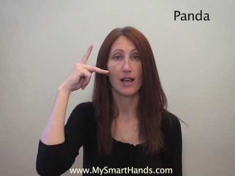 panda - ASL sign for panda