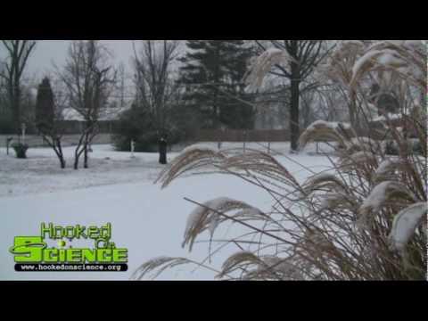 Winter Storm 2010