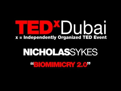 TEDxDubai - Nicholas Sykes - Biomimicry 2 0