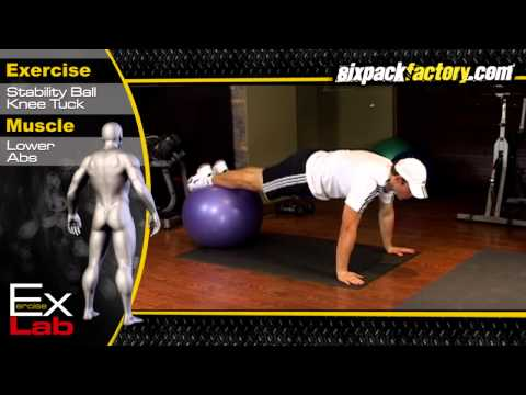 Stability Ball Knee Tuck : Best Lower Ab Exercises