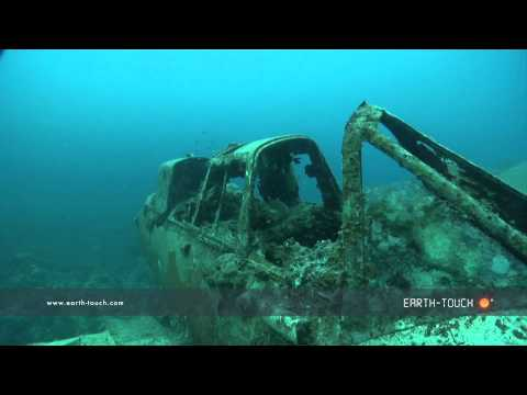 Divers explore sunken war plane