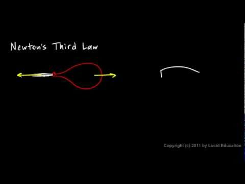 Physical Science 2.7a - Newton`s Third Law