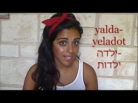The Hebrew Noun