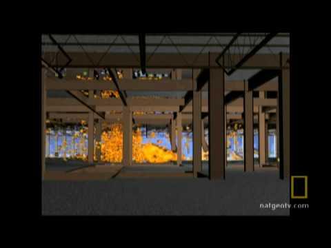 9/11 Impact Anatomy