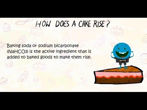 Why does cake rise?