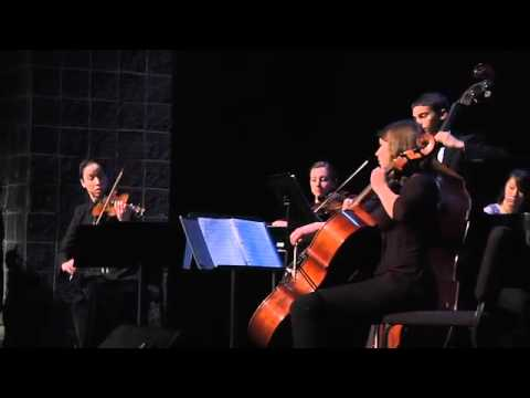 TEDxGreenville - Fine Arts Center Classical Quintet