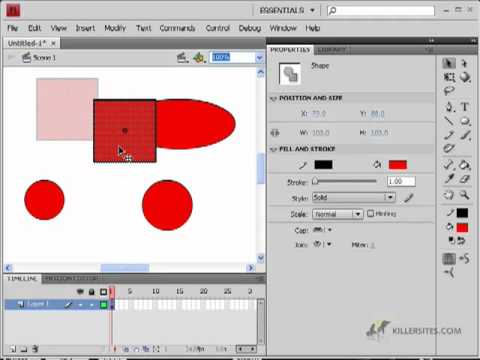 Flash CS4 Basics - Selection Tool