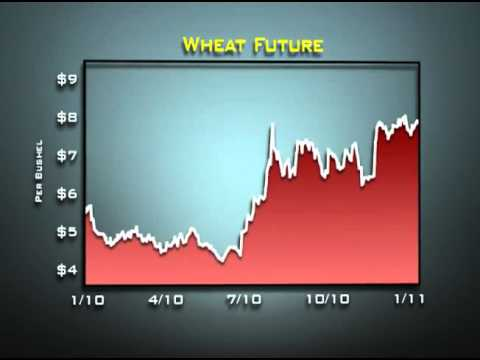 Money and Markets - Commodities in 2010, Part II