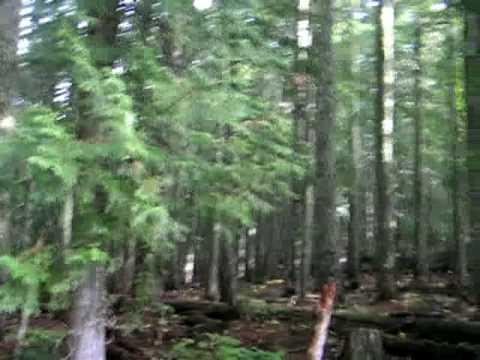 46 North Latitude 122 West Longitude, Washington