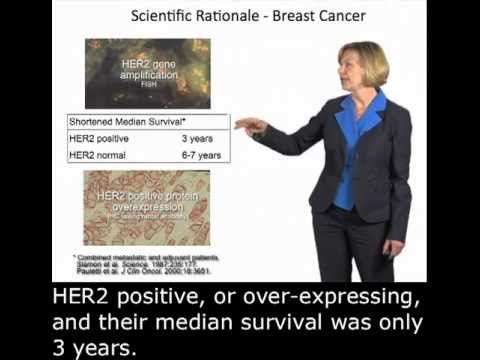 Susan Desmond-Hellmann (UCSF): Herceptin and Drug Development with English Subtitles