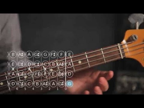 Bass Guitar Lesson: How to Play Note D