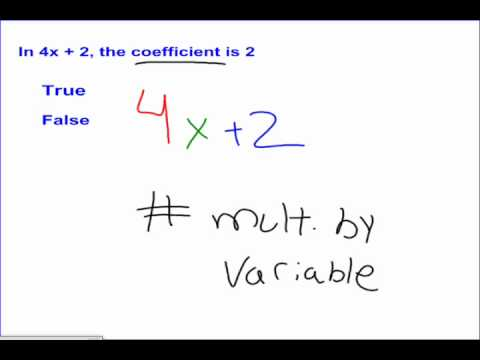 Variables and Expressions #3