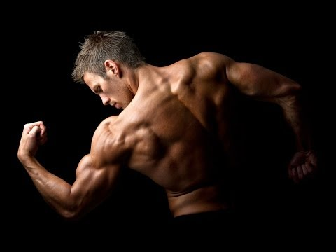 Eating Protein to Build Muscle | Bodybuilding Supplements and Nutrition