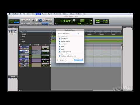 Pro Tools: Viewing and manipulating tracks | lynda.com