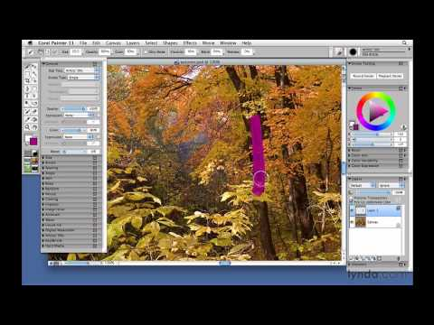 Painter: Distorting an image with the Distortion brush | lynda.com