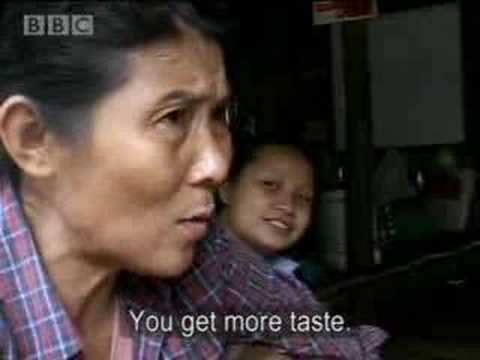 Survival in Burma - part two - BBC
