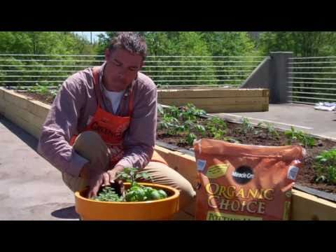 How To Get Started with Container Gardens - The Home Depot
