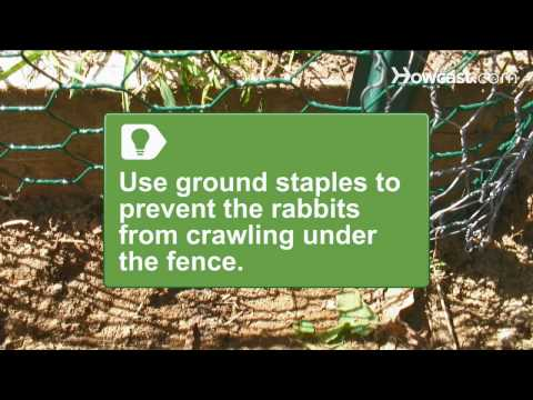 How To Install a Rabbit-Proof Fence