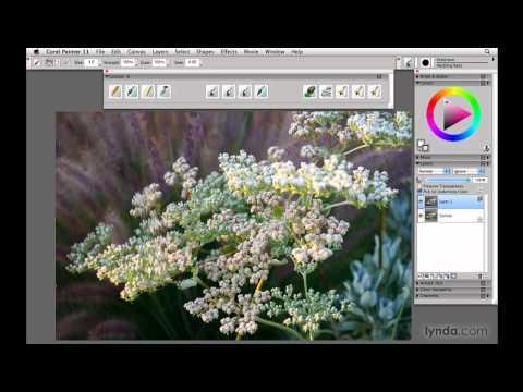 Painter, Wacom: What Painter can do   lynda.com