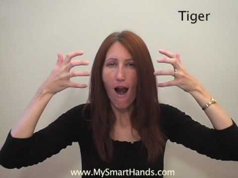 tiger - ASL sign for tiger