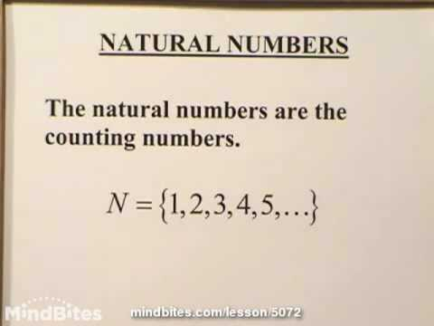 Basic Math: All About Numbers