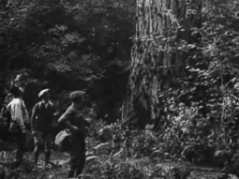 Red Enemy: The Story of a Tree (1922)