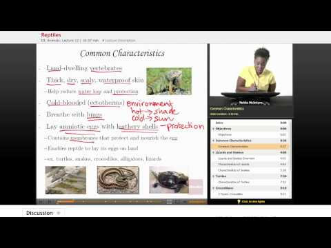 Life Science: Reptiles