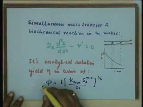 Lecture - 24 Steady State Analysis of Mass Transfer