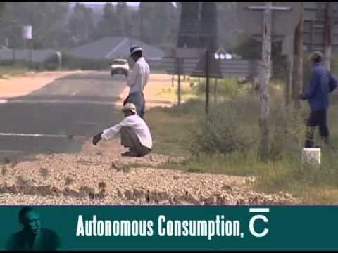 Consumption as a behavioural equation