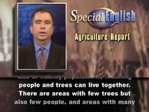 Study Finds More Trees on Farms Than Was Thought