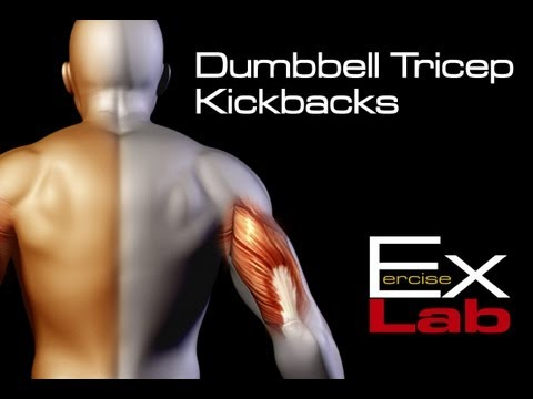 Tricep Kickbacks with Dumbbells : Best Tricep Exercises
