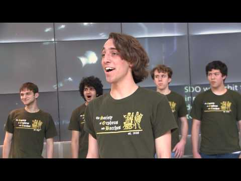 The Society of Orpheus and Bacchus Sings at the American Museum of Natural History