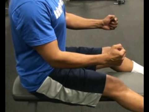 Proper Position for Seated Row : BeYourTrainer.com