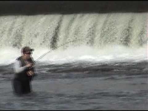 SusquehannaFishing.com 10/9/09 Report: Sunbury Walleye
